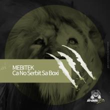 mebitek zoo recordings artwork