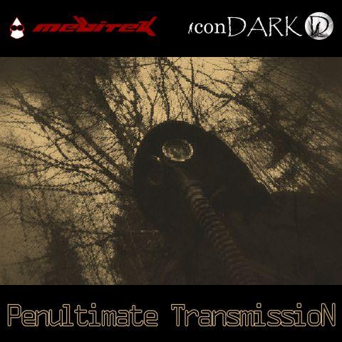 Penultimate Transmission cover