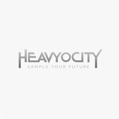 Heavyocity Media